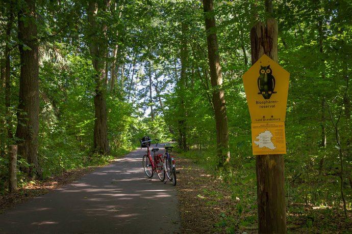 Radweg durch das Biosphaeren-Reservat (Foto: templiner.de)
