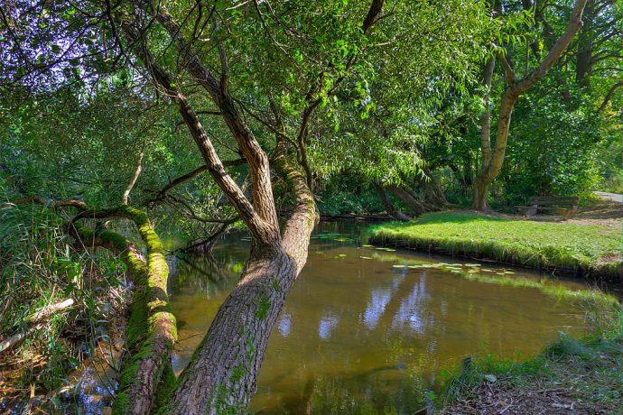 Wunderbare Natur im Biosphären-Reservat (Foto: templiner.de)