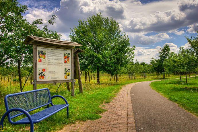 Hinweisschild mit Erläuterungen zur Apfelsortenschau an der Kurmeile (Foto: templiner.de)